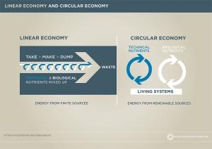 EMF_Linear and circular economy
