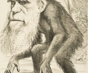 Evolution's Fatal Flaw – Lack of Fossil Evidence