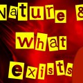 Why Naturalism Fails to Describe Reality