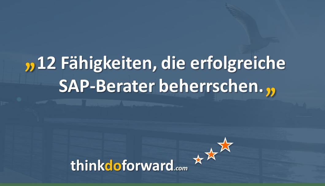 sap_berater_skills