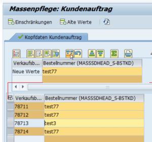 SAP MASS – so einfach könntest du das Projekt retten. – Für SAP-Berater