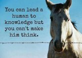 Lead to knowledge but...