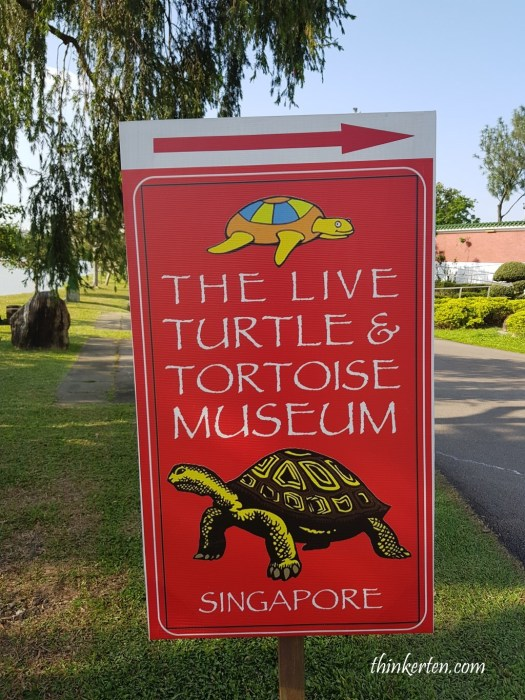 Live Turtle & Tortoise Museum in Singapore Chinese Garden