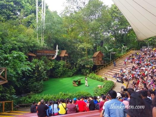 Pool Amphitheater Show at Jurong Bird Park