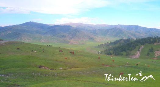China Northern Xinjiang - Learn about the Kazakh minority in Jiadengyu Glassland 贾登峪 & 哈萨克毡房