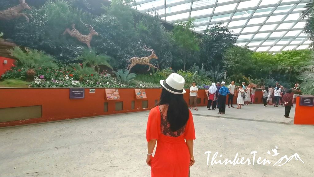 Singapore Garden By the Bay - Flower Dome vs Cloud Forest Dome