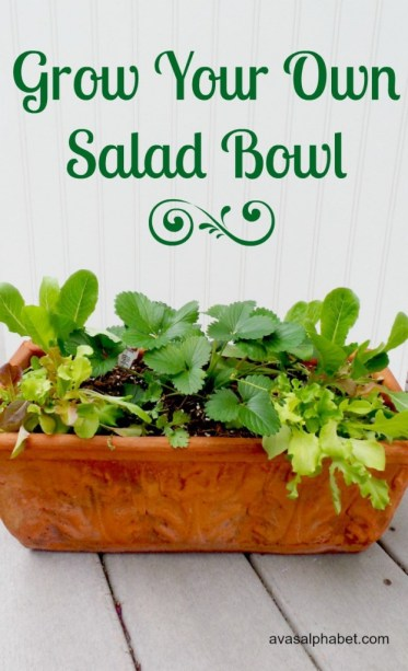 Salad-bowl-tall