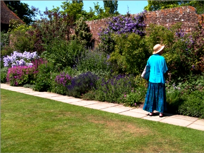 purple border copyright Abbie Jury for thinkingardens, editor Anne Wareham, Veddw, South Wales garden, Welsh gardens.
