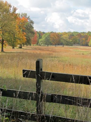 Autumn fields, protected, copyright Susan Cohan for thinkingardens