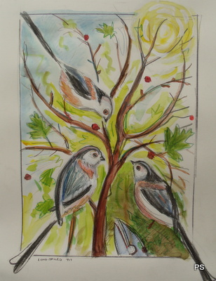 Long tailed tits: original art work for thinkingardens by Paul Steer, copyright Paul Steer
