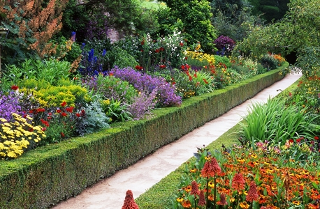 Powis border copyright Charles Hawes, Veddw, for thinkingardens