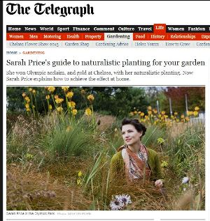 Telegraph Article on Naturalistic Planting on the Telegraph, on thinkingardens
