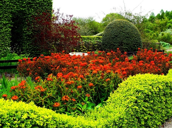 Veddw-Front-Garden-Early-May-2-2014-Copyright-Anne-Wareham-042 2