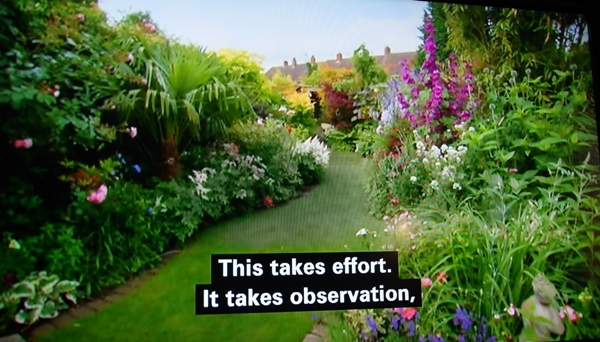 Show Me Your Best Back Garden Tv Review By Alison Levey For - Pictures of back gardens