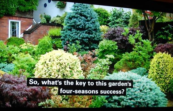 Britain's Best Back Gardens on thinkingardens