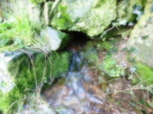 Water running www.thinkingcowgirl.wordpress.com
