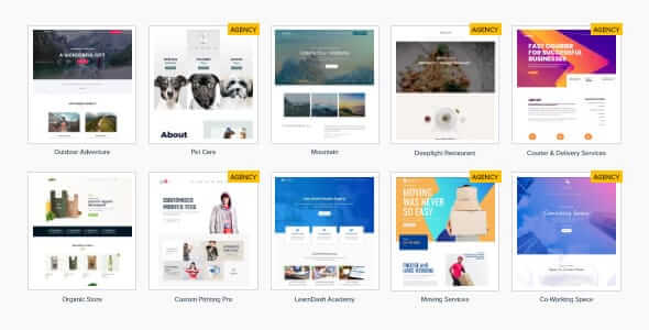 Astra Premium Sites 236 Nulled Ready to Import Starter