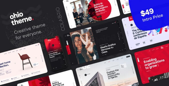 Ohio 210 Nulled Creative Portfolio Agency WordPress Theme