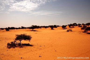 No Man's Land - Mauritania