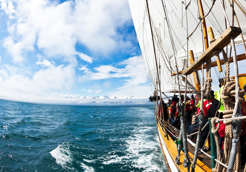 Whale watching boat - Iceland