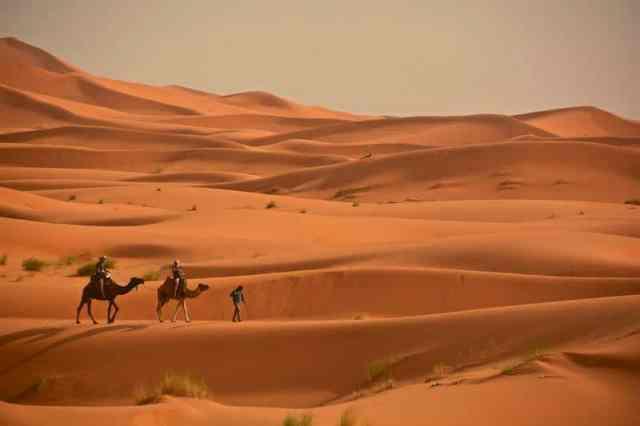 Sahara - Merzouga, Marocco