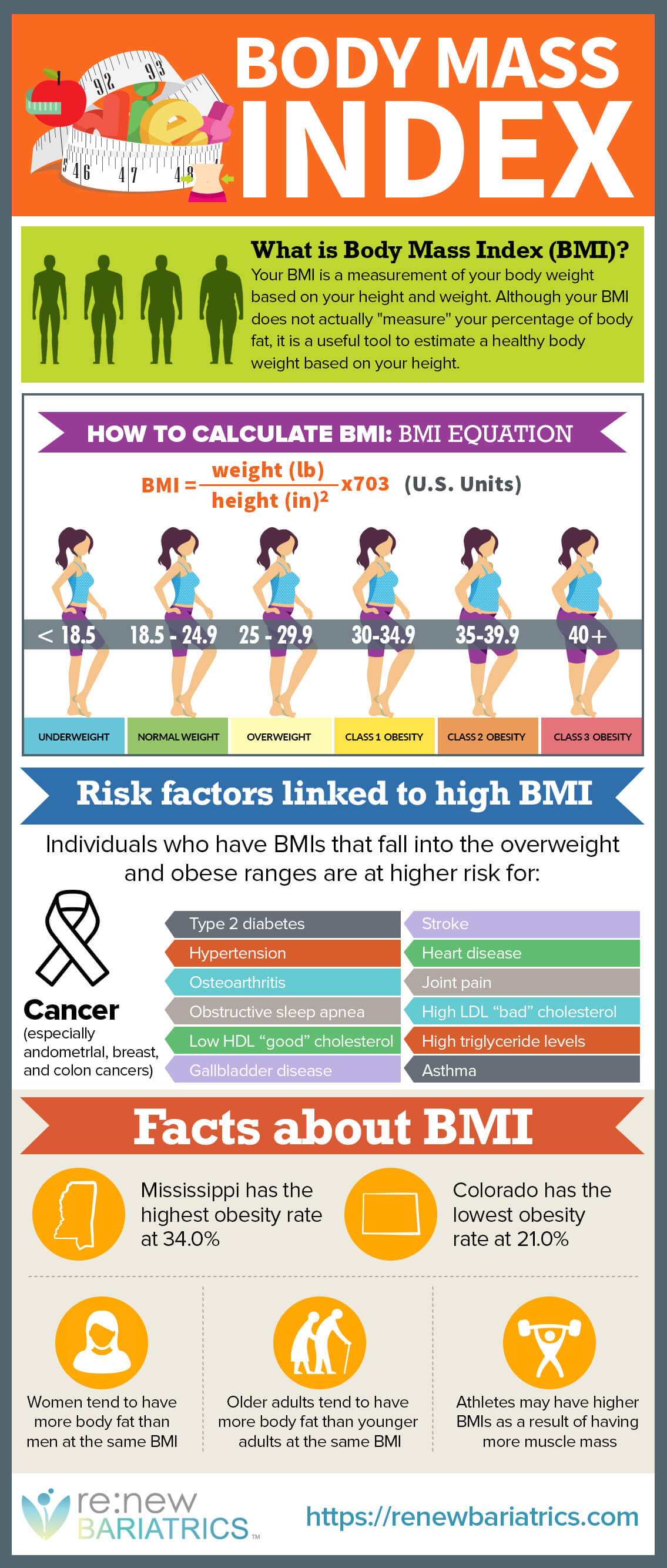 Calculating Your Bmi Thinking Skinny