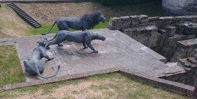 Three Lions.