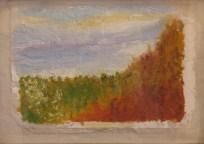 """Untrammeled Hill"" Martha Shepp, Acrylic"