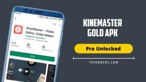 Kinemaster Gold Pro Apk