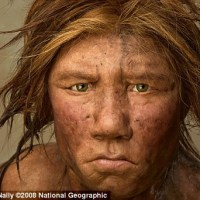 Homo sapiens, Neanderthals and Denisovans... did they interbreed?