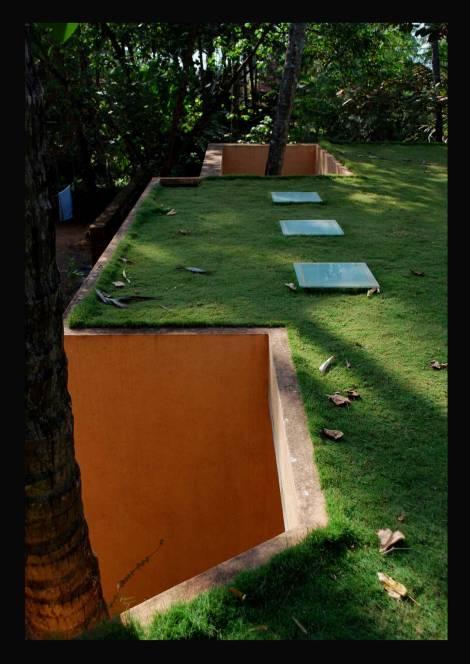 The terrace lawn.