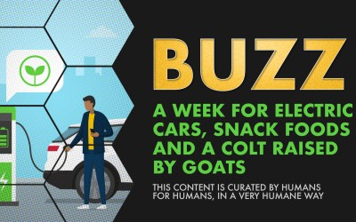 Weekly Buzz: A Week for Electric Cars, Snack Foods, and a Colt Raised by Goats