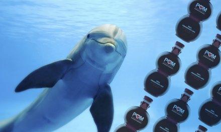 POM Wonderful's Dolphin Impaled Ad