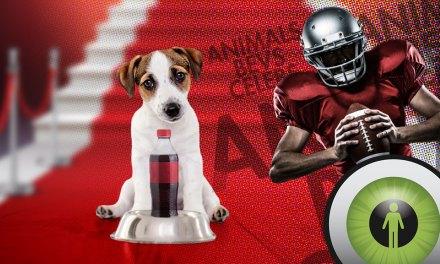 WATCH EPISODE 113: ABCs of Super Bowl Ads