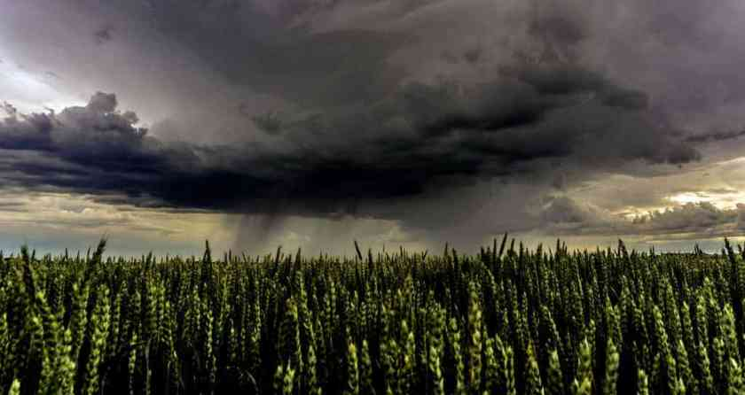 agriculture cloud formation clouds 459129_result