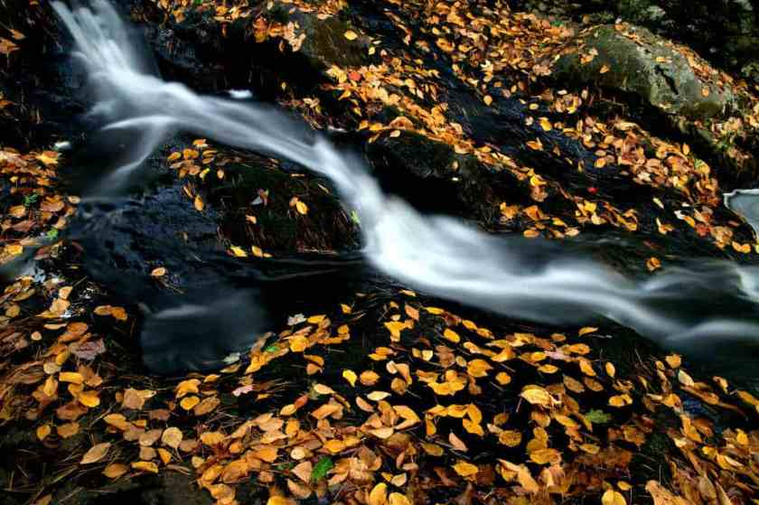 autumn cascade creek 675958_result