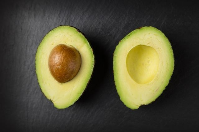 avocado can cause some problem to your dog