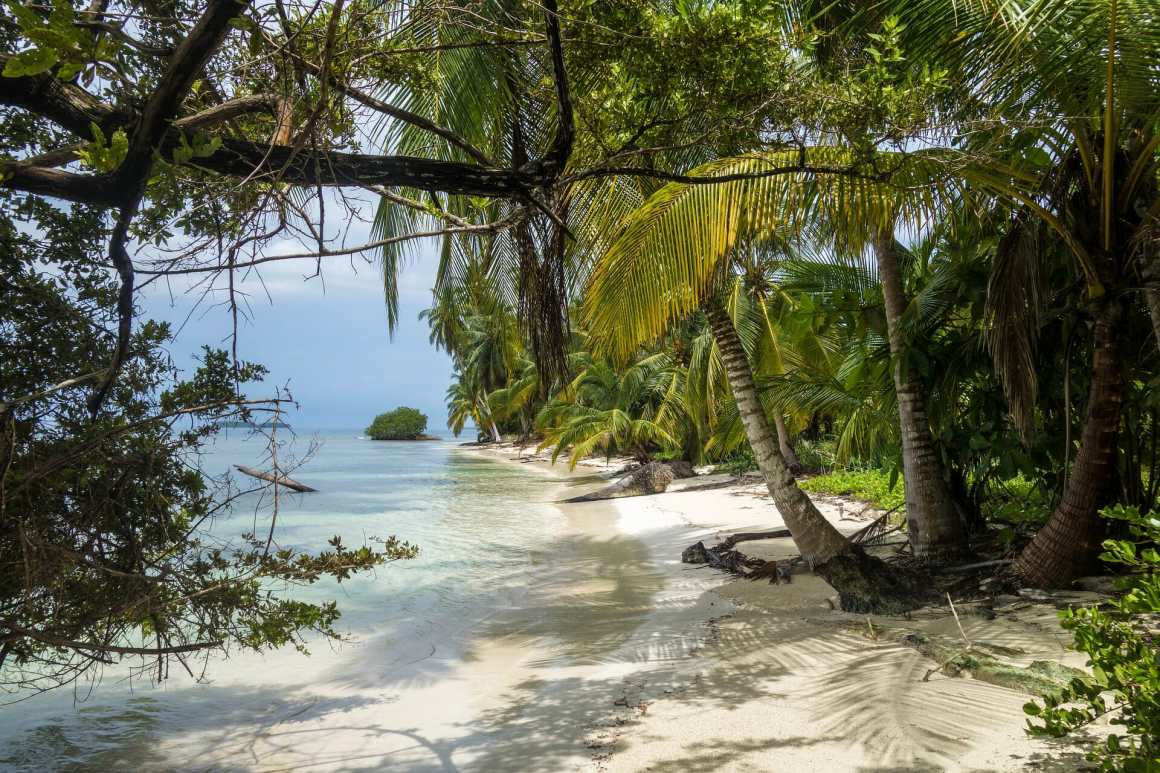 private island digital nomads