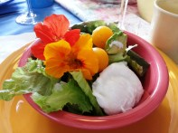 Book Club (Mary's) - roast vegetables, bacon, salad greens, edible flowers, poached egg
