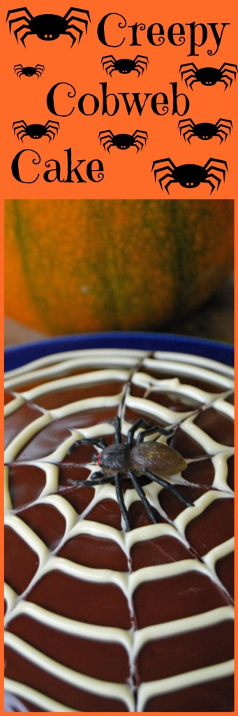 Halloween Baking -Creepy Cobweb Cake - A simple chocolate sponge topped with a spooky cobweb and a scary spider for Halloween!