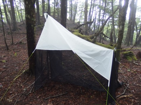 Malaise trapping for insects