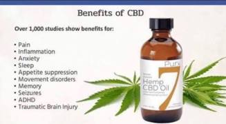 Full Spectrum Hemp Oil Amp Other Products From Zilis No Thc