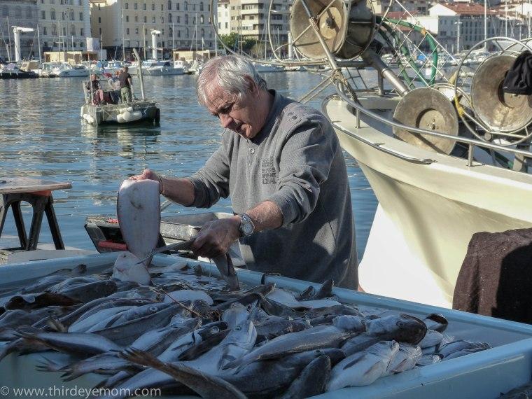 Marseille's Fish Market