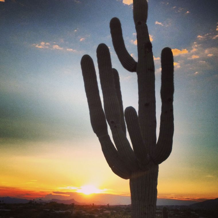 Arizona Sunset
