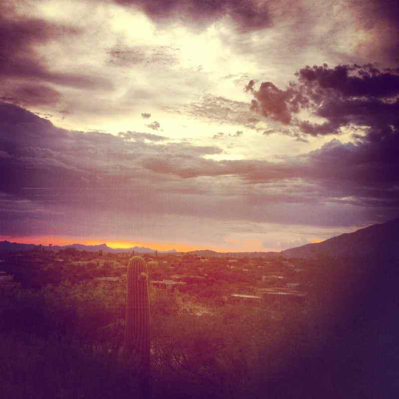 Desert Sunset Arizona