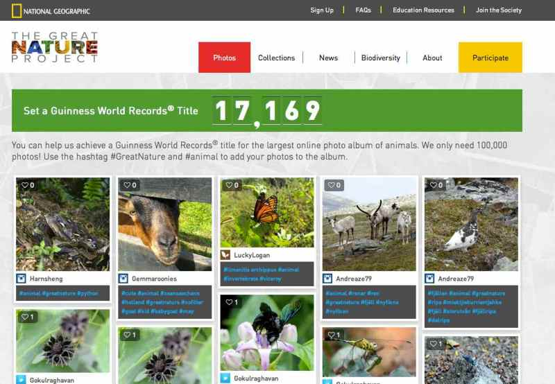 Screen Shot of the Great Nature Project