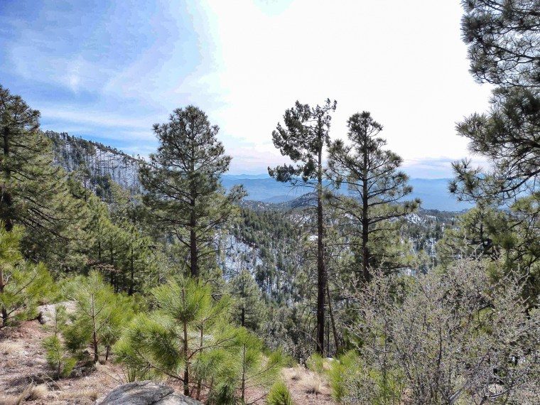 Mount Lemmon Scenic Byway Tucson Arizona