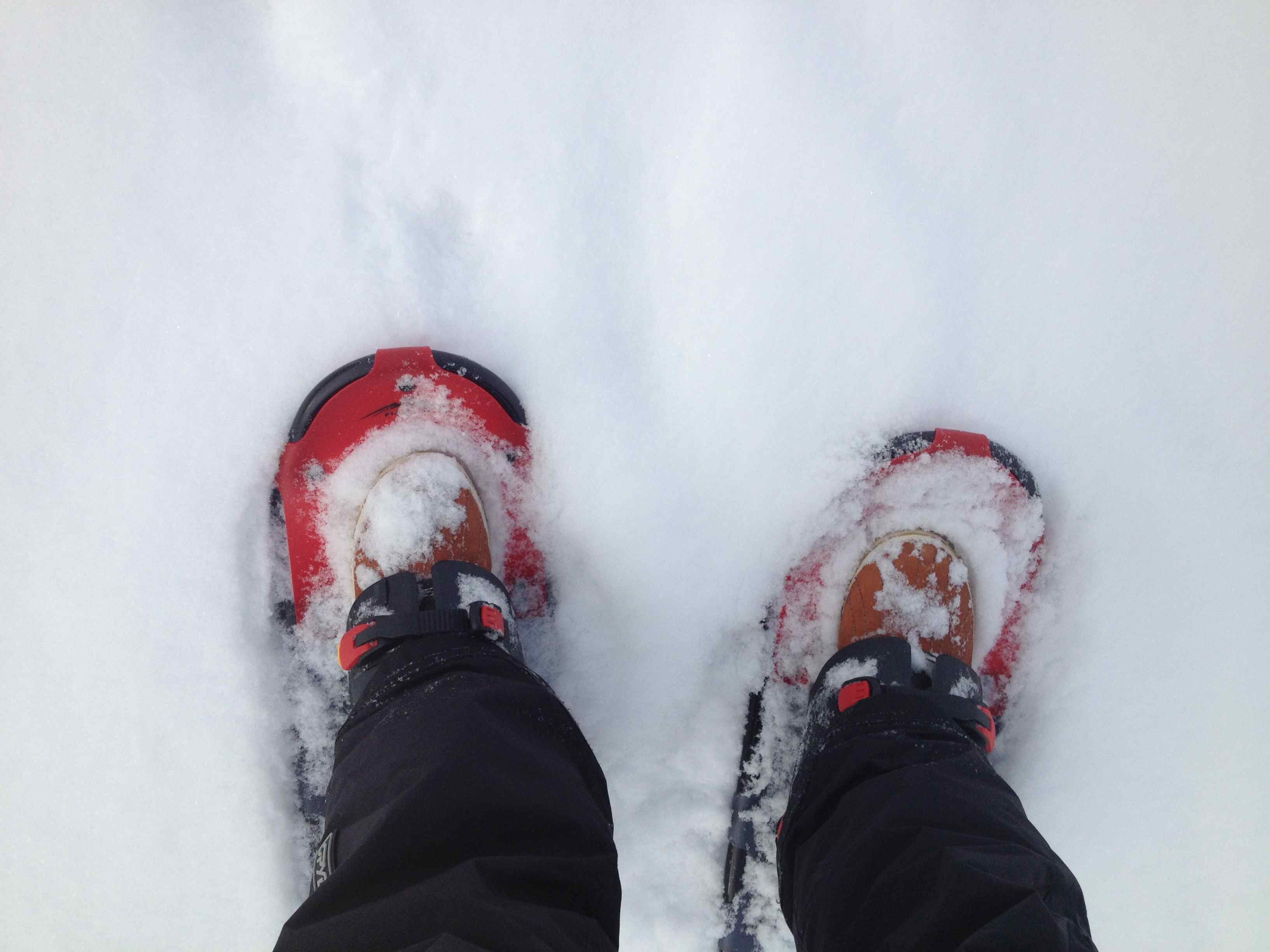 Snowshoes on Lake Harriet