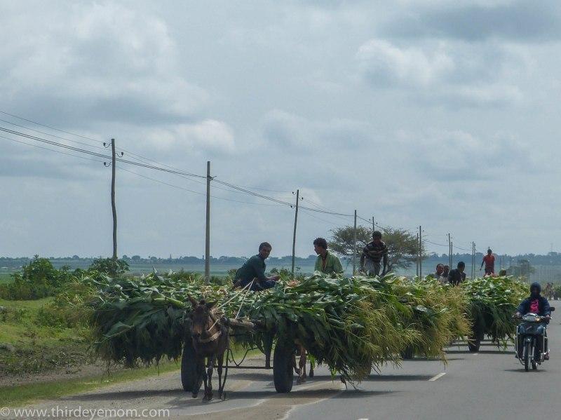 Rural Africa