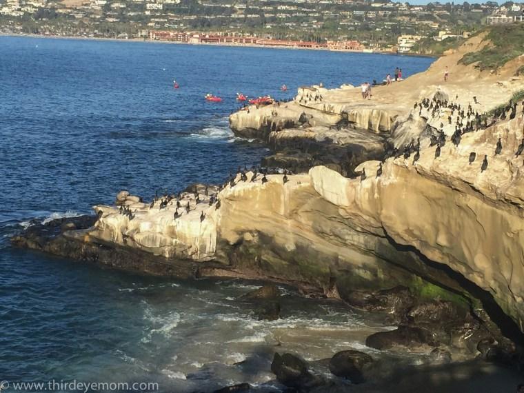 La Jolla Caves, San Diego California